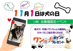 スマイルコンタクト会員様限定 上新庄 犬の日 キャンペーン