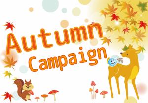 スマイルコンタクト秋のキャンペーン